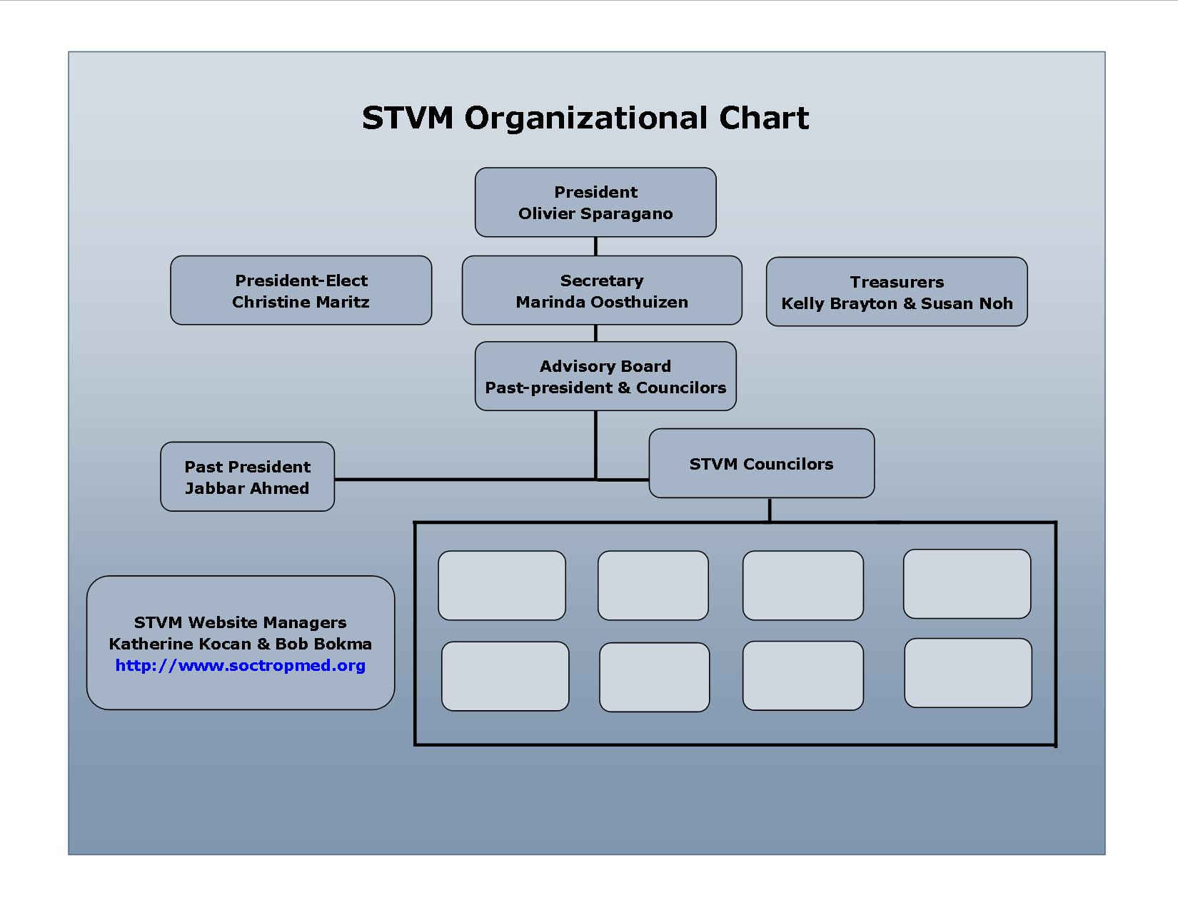 STVM organizational chart 2015